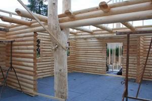 Ein kompletter Baumstamm wurde im Wohnzimmer integriert